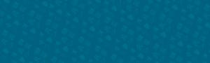 Web Age hosting, design and development pattern background